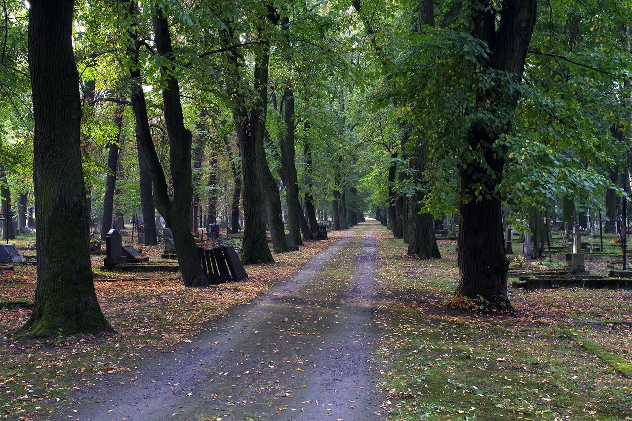cmentarz oborniki śląskie